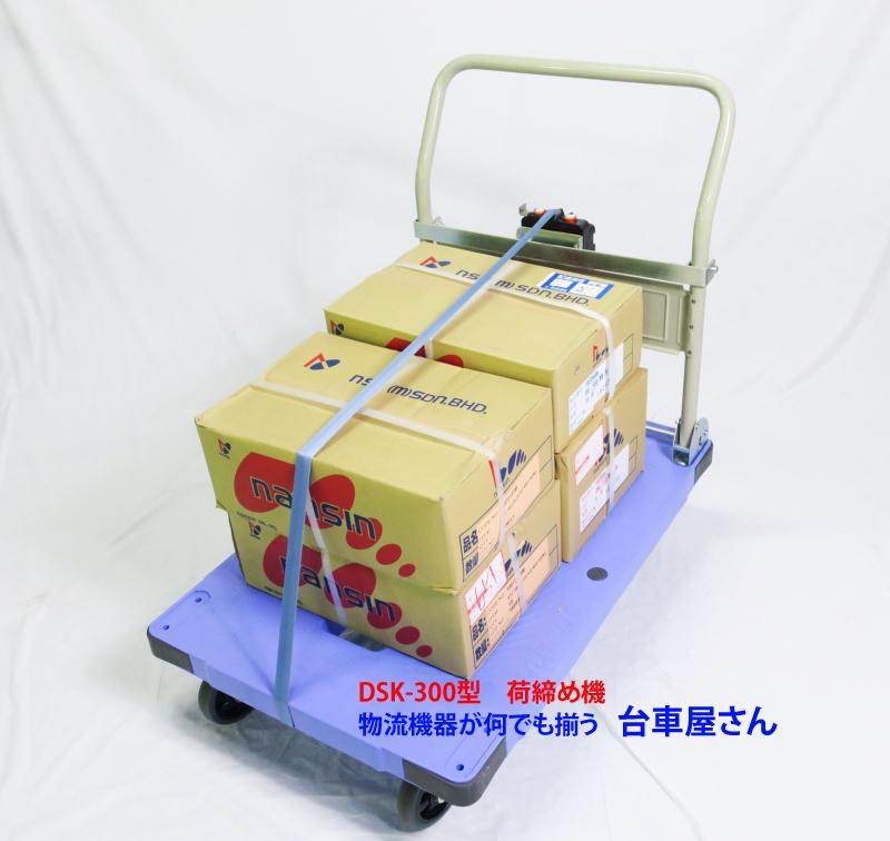 Xe đẩy hàng DSK-301
